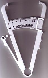 Normaler fettanteil körper frau
