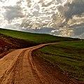Camino - panoramio (41).jpg