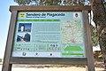 Camino de Magaceda 02.jpg