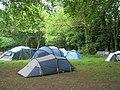 Campsite at Lyons Copse - geograph.org.uk - 824943.jpg