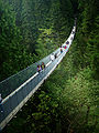 Capilano Suspension Bridge -d.jpg