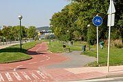 Caril Bici Burgos