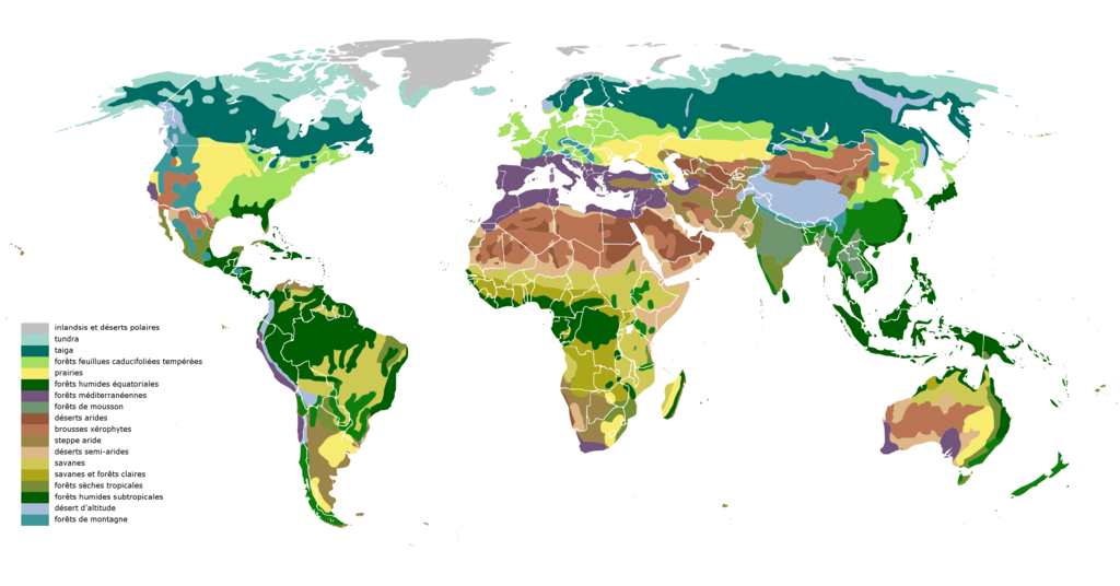 Image Result For World Change Coloring