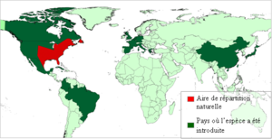 Carte de la répartition actuelle de la Grenouille taureau dans le monde