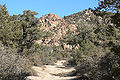 Caruthers Canyon 1.jpg