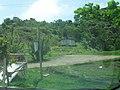 Casa no morro pizzariabatpapo - panoramio.jpg
