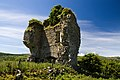 Castles of Connacht Castletown Leitrim (2).jpg