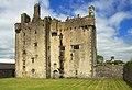 Castles of Munster, Killaleigh, Tipperary (1) - geograph.org.uk - 1952433.jpg