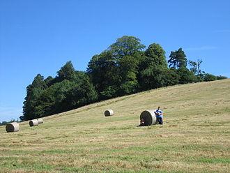 Climate of Ireland - July sunshine in County Cavan