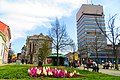 Centar, Zrenjanin, Serbia - panoramio (6).jpg