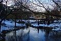 Central Park's Pond (93350536).jpg