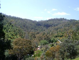 Chambers Gully - Chambers Gully, as viewed from one of Waterfall Gully's firetracks