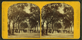 Charles Street Mall, Boston Common, from Robert N. Dennis collection of stereoscopic views 2.png