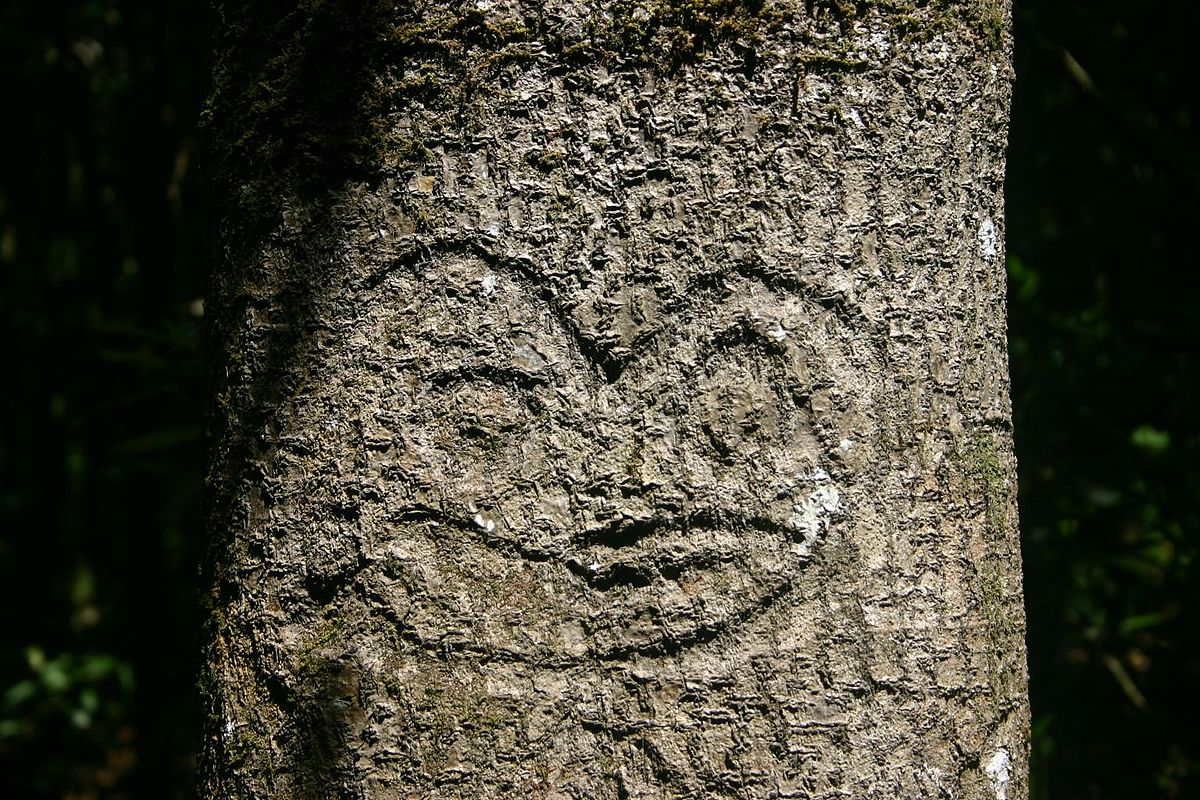 Dendroglyph wikipedia