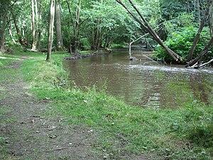 Feurs - Lignon du Forez River.