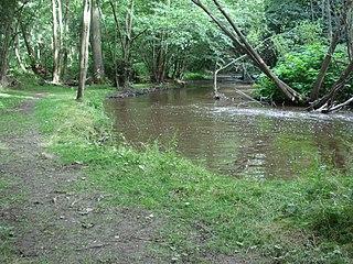 Lignon du Forez river in France, tributary of the Loire