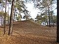 Cherkas'kyi district, Cherkas'ka oblast, Ukraine - panoramio (1189).jpg