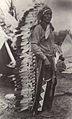 Chief Iron Tail in Long Bonnet.jpg