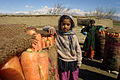 Children with carrots afghanistan.jpg