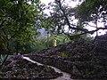Chipinque - panoramio - Tereso Hernández.jpg