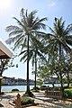 Choeng Thale, Thalang District, Phuket 83110, Thailand - panoramio (229).jpg