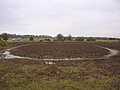 Circular feature near Moonhills car park, New Forest - geograph.org.uk - 56838.jpg