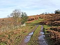 Clee Liberty Common - geograph.org.uk - 659899.jpg
