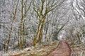 Comberdale Hill IMG 6756-01 - panoramio.jpg