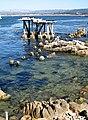 Cormorant Condo in Monterey, CA.jpg