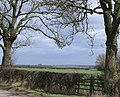 Countryside north of Whissendine - geograph.org.uk - 144583.jpg