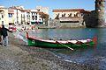 Course de llaguts de rem à Collioure (3).JPG