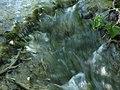 Croatia P8144708 (3938326769).jpg