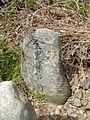 Dai 16 Chiwari Wainai, Miyako-shi, Iwate-ken 028-2105, Japan - panoramio (5).jpg