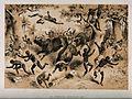 David Livingstone (?) and his followers attacked by buffaloe Wellcome V0018848.jpg