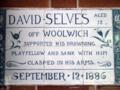 David Selves.png