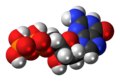 Deoxyguanosine-diphosphate-3D-spacefill.png