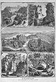 Die Gartenlaube (1875) b 649.jpg
