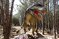 Dino Parque (16).jpg