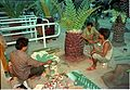Dinosaurs Alive Exhibition in Progress - Science City - Calcutta 1995-June 462.JPG