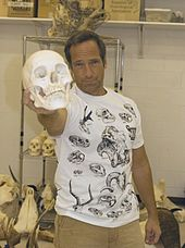 mike rowe wiki
