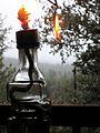 Displaced Flame (2171441024).jpg