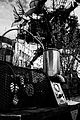 Distiller - L'expédition Végétale (8725687828).jpg