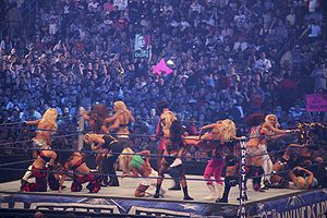 Women in WWE - Image: Diva Battle Royal at Wrestle Mania 25 2