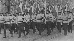 National Party (Poland) - Members of the original Stronnictwo Narodowe at the funeral of Roman Dmowski, Warsaw 1939.