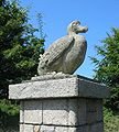 Dodo, Jersey Zoo.jpg