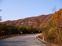Dolsan-Ryung in fall.jpg