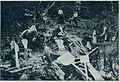 Domači obrti na Kranjskem - izdelovanje lopat v gozdu 1903.jpg