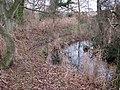 Drain beside footpath - geograph.org.uk - 1107376.jpg