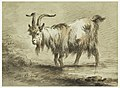 Drawing, Study of a Goat, 1772 (CH 18326093).jpg