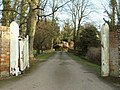 Driveway to Horseheath Lodge - geograph.org.uk - 313058.jpg
